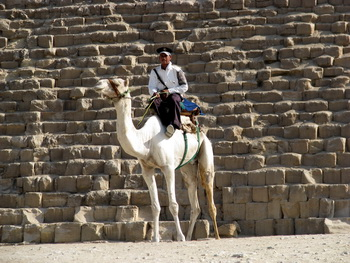 An Egyptian policeman patrols in from of the pyramid of Cheops in Cairo. Copyright: G Simmermacher, The Southern Cross, South Africa