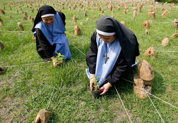 Catholic nuns plant trees in a field, during a programme marking World Environment Day (Photo:Romeo Ranoco, Reuters,  CNS)