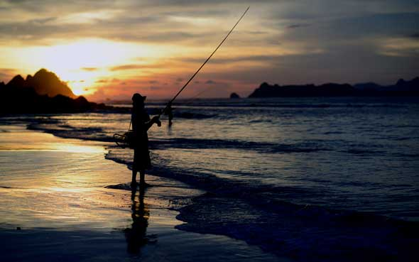 Anglers hope for fish to bite. In her column, Toni Rowland reflects on her experiences of watching fishers on a beach.