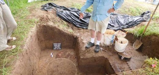 Archaeologist Jeffrey Mitchem, who has waited since 1992 to uncover the remains of what they believe could be a cross from Hernando de Soto's expedition, points to the pattern of the post hole just below where it was removed from the mound April 20 in Cross County, Ark. (CNS photo/Jessica Crawford, The Archaeological Conservancy)