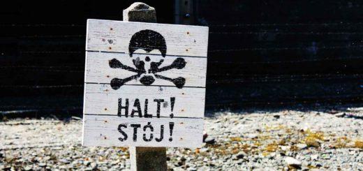 halt_skull